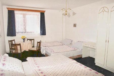 Ubytování na horách - Penzion v Rokytnici v Orlických horách - pokoj